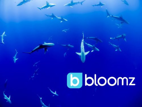 Bloomz Makes a Big Splash at #SharkTankEDU